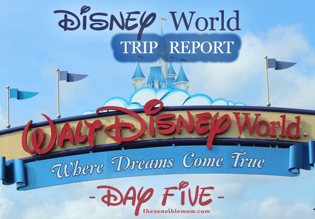 disney world trip report