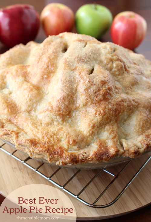 Best Ever Apple Pie Recipe And Recipe For A Double Pie Crust