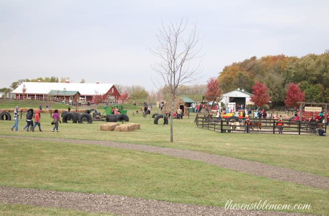 Kuipers Family Farm Review